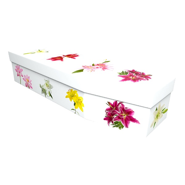 Lily Cardboard Coffin - Price Reduced!
