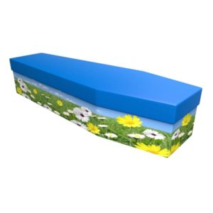 Summer Scene Cardboard Coffin - Price Reduced!