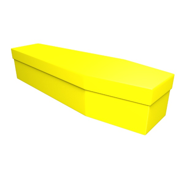 Yellow Cardboard Coffin - Price Reduced!