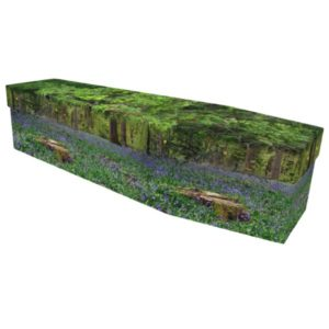 Bluebell Forest Cardboard Coffin