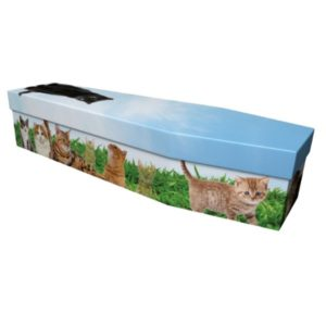 Cats Cardboard Coffin