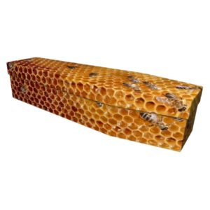 Honeycomb Cardboard Coffin
