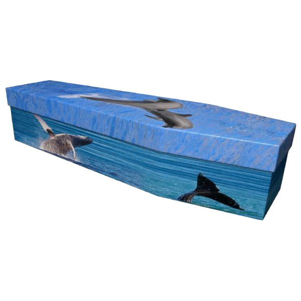 Dolphin and whales Cardboard Coffin