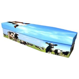 Cows Cardboard Coffin