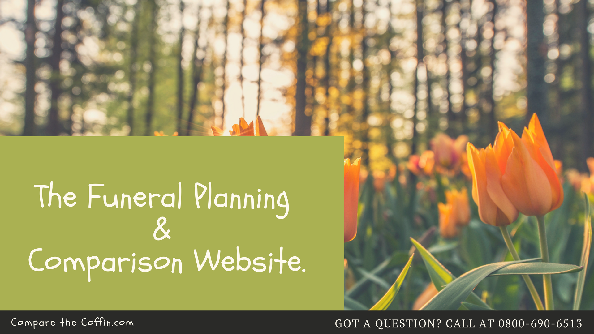 How Do You Plan A Funeral for A Loved One?
