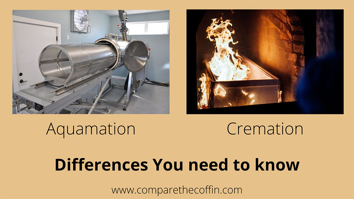 Aquamation Vs. Cremation: Differences You Need To Know