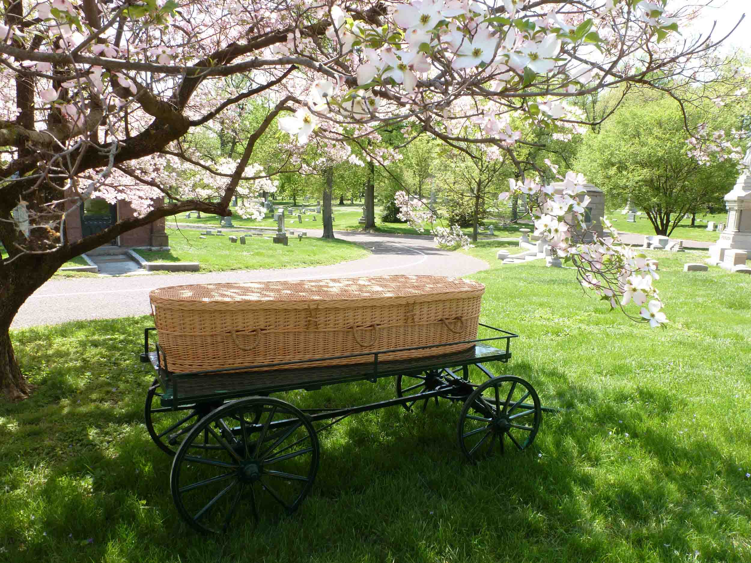 7 Facts About Your Green Burial Options